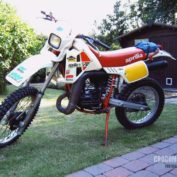 Aprilia-250-Tuareg-1985-photo