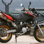 Aprilia-Pegaso-650-Factory-2007-photo