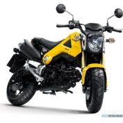 Honda-Monkey-2013-photo