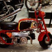 Honda-Monkey-50-2011-photo