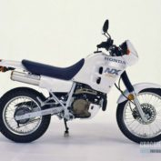 Honda-NX-250-1989-photo