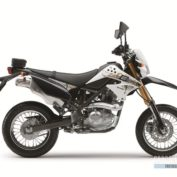 Kawasaki-D-Tracker-125-2012-photo