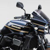 Kawasaki-ZRX1200-DAEG-2015-photo