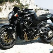 MV-Agusta-Brutale-750-Gladio-2007-photo