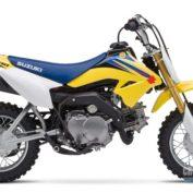 Suzuki-DR-Z70-2009-photo