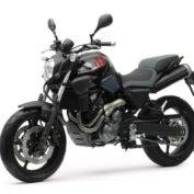 Yamaha-MT-03-2013-photo