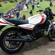 Yamaha-RD-250-1985-photo