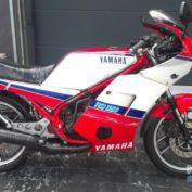 Yamaha-RD-350-1986-photo
