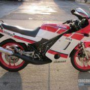 Yamaha-RD-350-1988-photo