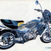 Yamaha-RD-350-LC-1982
