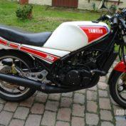 Yamaha-RD-350-N-1989-photo