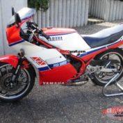Yamaha-RD-350-reduced-effect-1988-photo
