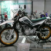 Yamaha-Serow-250-2012-photo