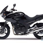 Yamaha-TDM-900-2002-photo
