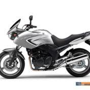 Yamaha-TDM-900A-2009-photo