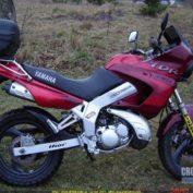 Yamaha-TDR-125-1999-photo
