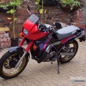 Yamaha-TDR-250-1990-photo