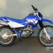 Yamaha-TT-R-225-2003-photo