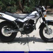 Yamaha-TW200-2008-photo
