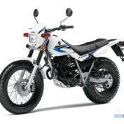 Yamaha-TW200-2012-photo