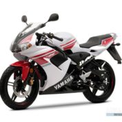 Yamaha-TZR-50-2008-photo