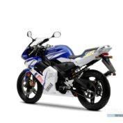 Yamaha-TZR-Race-Replica-2006-photo