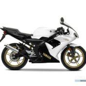 Yamaha-TZR50-2012-photo