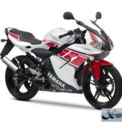 Yamaha-TZR50-WGP-50th-Anniversary-2012-photo