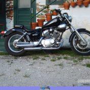 Yamaha-Virago-250-2006-photo