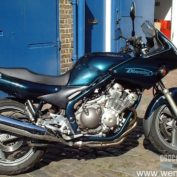Yamaha-XJ-600-S-Diversion-1996-photo