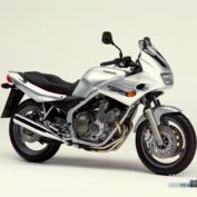 Yamaha-XJ-600-S-Diversion-2002-photo